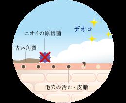 Deoko odor causing bacteria old horny skin dirt and sebum